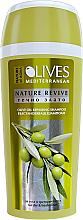Fragrances, Perfumes, Cosmetics Olive Shampoo - Nature of Agiva Olives Hair Shampoo