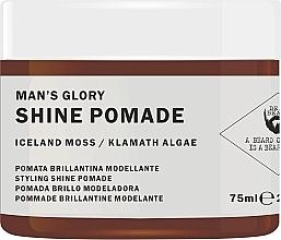 Fragrances, Perfumes, Cosmetics Shine Hair Pomade - Nook Dear Beard Man's Glory Shine Pomade