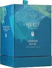 Fragrances, Perfumes, Cosmetics Set - Scottish Fine Soaps Sea Kelp Marine Spa Luxurious Gift Set(b/cr/75ml + b/peel/75ml + sh/cr/75ml + soap/40g)