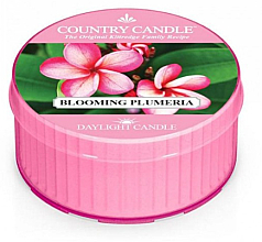 Fragrances, Perfumes, Cosmetics Scented Candle - Kringle Candle Blooming Plumeria