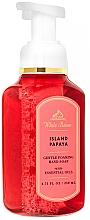 Fragrances, Perfumes, Cosmetics Papaya Foaming Hand Soap - Bath and Body Works White Barn Island Papaya Gentle Foaming Hand Soap