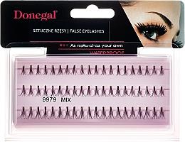 Fragrances, Perfumes, Cosmetics Individual Lashes - Donegal Eyelashes Mix