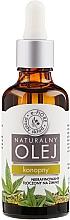 Fragrances, Perfumes, Cosmetics Hemp Oil - E-Fiore Natural Oil