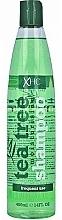 Fragrances, Perfumes, Cosmetics Hair Shampoo - Xpel Marketing Ltd Tea Tree Shampoo