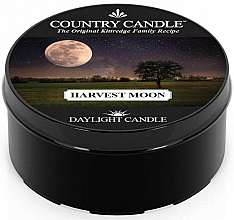 Fragrances, Perfumes, Cosmetics Tea Candle - Country Candle Harvest Moon Daylight
