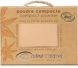 Fragrances, Perfumes, Cosmetics Compact Powder - Couleur Caramel Poudre Compacte