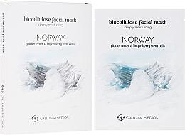 "Fragrances, Perfumes, Cosmetics Sheet Mask ""Norway"" - Calluna Medica Norway Deeply Moisturizing Biocellulose Facial Mask"
