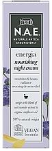 Fragrances, Perfumes, Cosmetics Night Face Cream - N.A.E. Energia Nourishing Night Cream