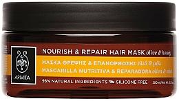 Fragrances, Perfumes, Cosmetics Nourishing Repairing Hair Mask with Olive Oil and Honey - Apivita Nourish & Repair Hair Mask With Olive & Honey