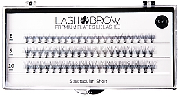 Fragrances, Perfumes, Cosmetics False Lashes - Lash Brown Premium Flare Silk Lashes Spectacular Short