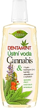 Fragrances, Perfumes, Cosmetics Mouthwash - Bione Cosmetics Dentamint Mouthwash Cannabis