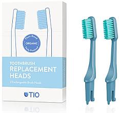 Fragrances, Perfumes, Cosmetics Replacement Toothbrush Heads, medium, blue - TIO Toothbrush Medium