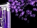 Paco Rabanne Ultraviolet Man - Eau de Toilette — photo N1